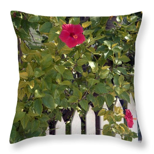 Azelea Throw Pillow featuring the photograph Along The Picket Fence by Richard Rizzo