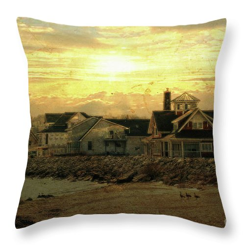 Shore Throw Pillow featuring the photograph Along The Shores by Joel Witmeyer
