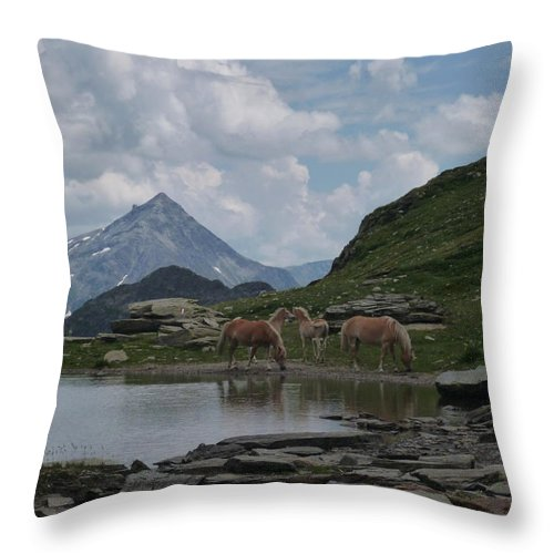 Alpes Throw Pillow featuring the photograph Alps' Horses by Laura Greco
