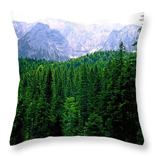 Bavaria Throw Pillow featuring the photograph Alpine Forest by Kevin Smith