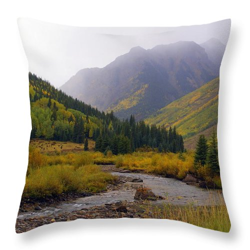 Colorado Throw Pillow featuring the photograph Alpine Loop Road by Marty Koch