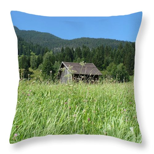 Alpine Throw Pillow featuring the photograph Alpine Meadow by Carol Groenen