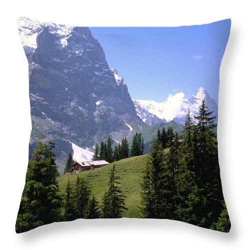 Alps Throw Pillow featuring the photograph Alps by Flavia Westerwelle