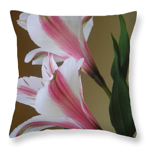 Nature Throw Pillow featuring the photograph Alstroemerias - Doubled by Lucyna A M Green