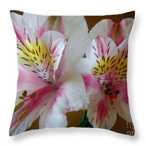 Nature Throw Pillow featuring the photograph Alstroemerias - Heralding by Lucyna A M Green