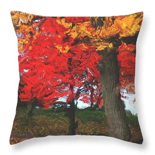 Abstract Digital Photo Throw Pillow featuring the digital art Altered State In The Park by David Lane