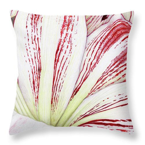 Amaryllis Throw Pillow featuring the drawing Amaryllis by Tammie Painter