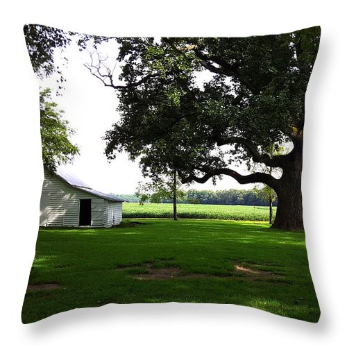 Barn Throw Pillow featuring the photograph Amazing Farm Yeard by Ami Brown