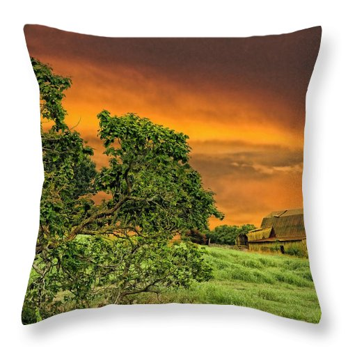 Landscapes Throw Pillow featuring the photograph Amber Skies by Jan Amiss Photography