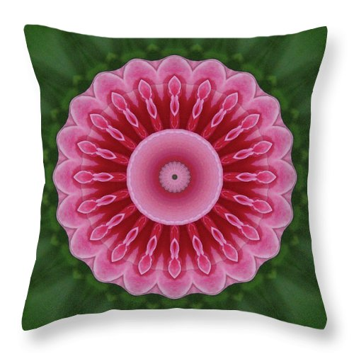 America Throw Pillow featuring the photograph America Climbing Rose Kaleidoscope by Robyn Stacey