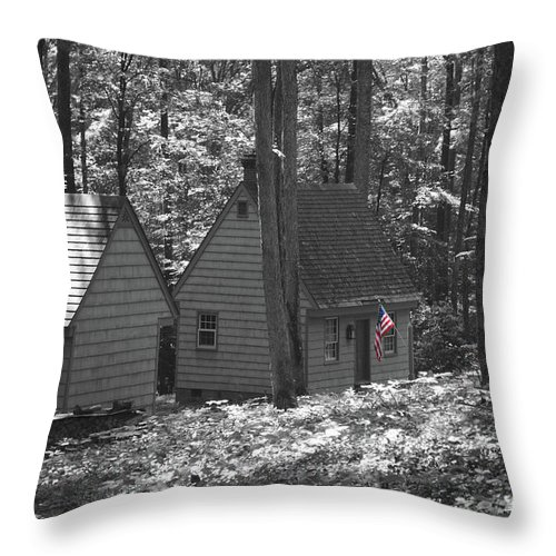 Little Throw Pillow featuring the photograph American Little House In The Woods by Jost Houk