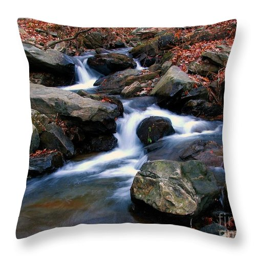 Water Throw Pillow featuring the photograph Amicalola Stream by Robert Meanor