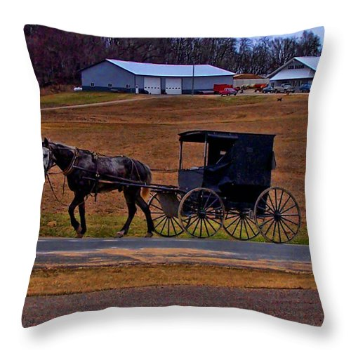 Wisconsin Throw Pillow featuring the photograph Amish Buggy by Tommy Anderson