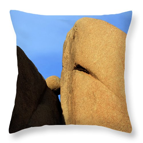 Joshua Tree National Park Throw Pillow featuring the photograph Amongst Giants by Bob Christopher