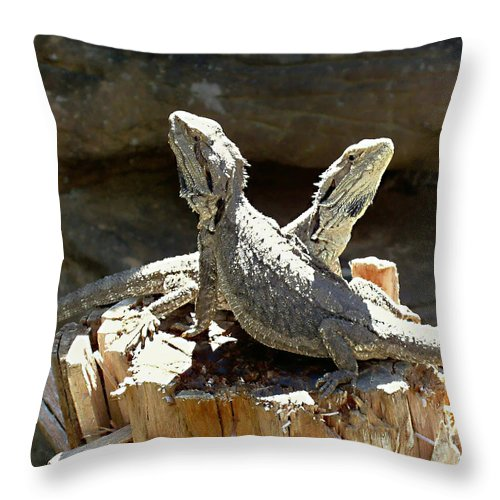 Amphion And Zethus Throw Pillow featuring the photograph Amphion And Zethus by Ellen Henneke