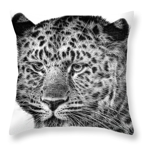 Snowleopard Throw Pillow featuring the photograph Amur Leopard by John Edwards