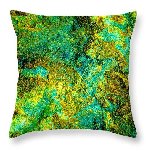 Macro World Black Close Up Turquoise Flagstone Abstract Bruce Pritchett Photography Throw Pillow featuring the photograph An Abstract World by Bruce Pritchett