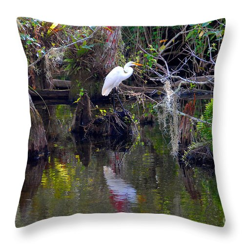 Everglades National Park Florida Throw Pillow featuring the photograph An Egrets World by David Lee Thompson