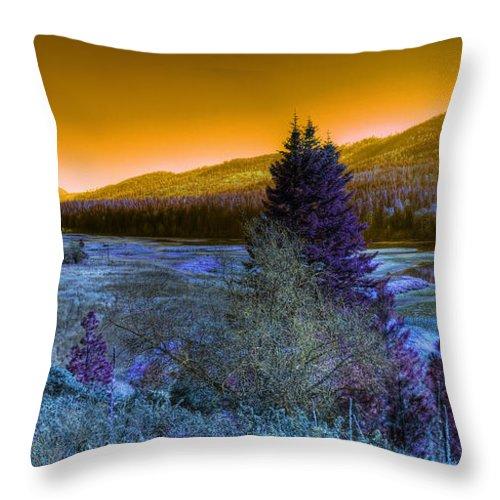 Fantasy Throw Pillow featuring the photograph An Idaho Fantasy 1 by Lee Santa