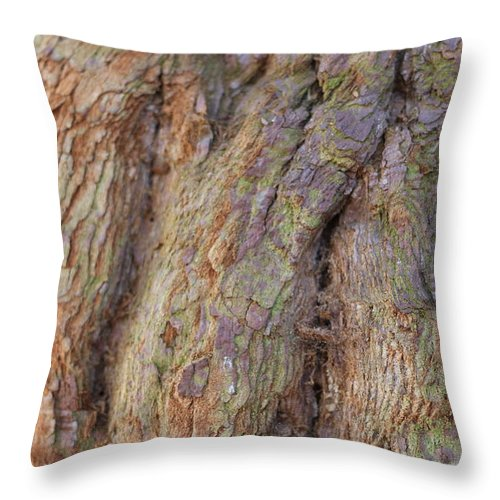 Timber Throw Pillow featuring the photograph Ancient Tree Skin by Igor Zharkov
