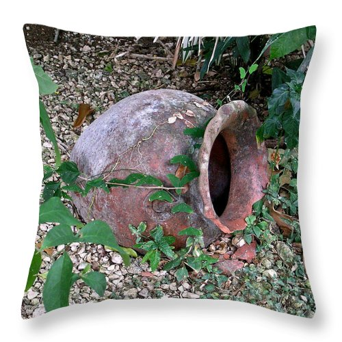 Ancient Throw Pillow featuring the photograph Ancient Urn by Douglas Barnett