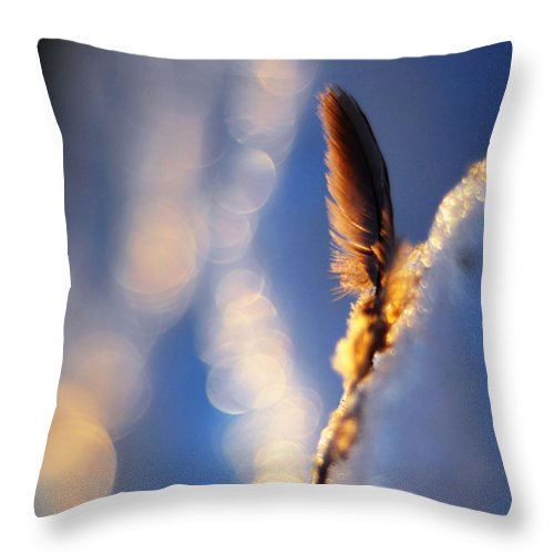 Feather Throw Pillow featuring the photograph And So Is The Sun by Rebecca Sherman