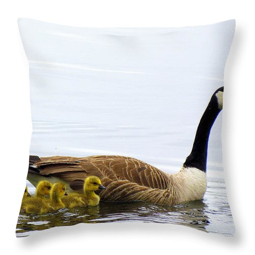 Geese Throw Pillow featuring the photograph And The Littlest One Shall Lead The Way by Lori Pessin Lafargue