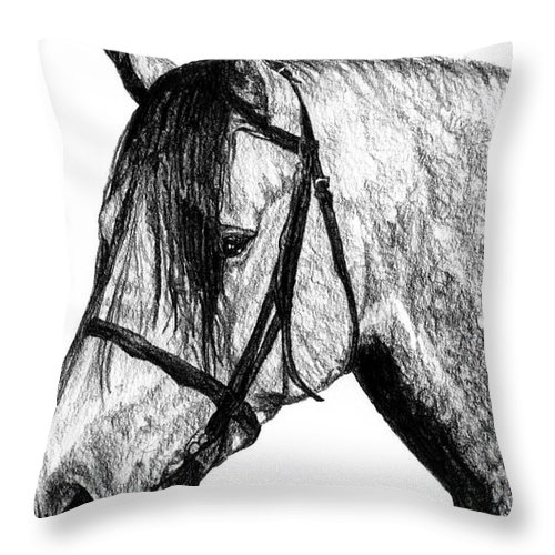 Andalusian Horse Throw Pillow featuring the drawing Andalusian Horse by Dan Pearce