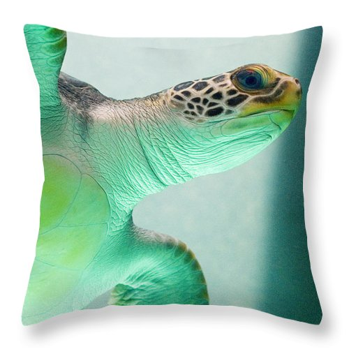 Skip Hunt Throw Pillow featuring the photograph Angel 2 by Skip Hunt