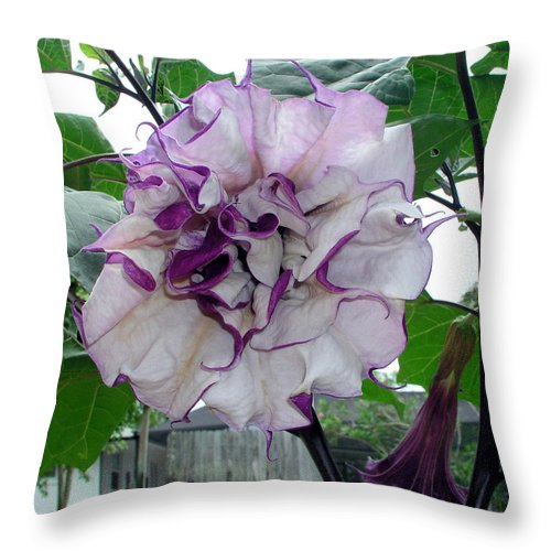 Angel Throw Pillow featuring the photograph Angel by Allan Hughes