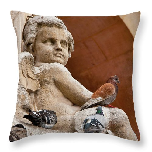 Angel Throw Pillow featuring the photograph Angel And Birds by Harry Spitz