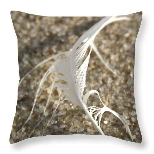 Seascape Throw Pillow featuring the photograph Angel Feather by Mary Haber