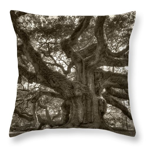 Angel Oak Throw Pillow featuring the photograph Angel Oak Live Oak Tree by Dustin K Ryan