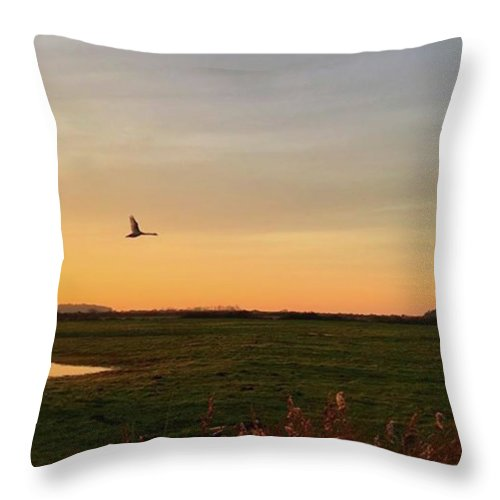 Natureonly Throw Pillow featuring the photograph Another Iphone Shot Of The Swan Flying by John Edwards
