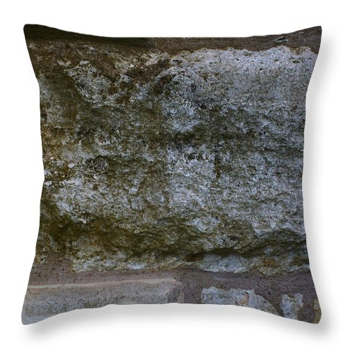 Throw Pillow featuring the photograph Another Mossy Brick In The Wall by Laurette Escobar