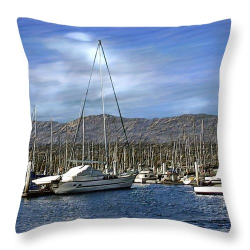 Ocean Throw Pillow featuring the photograph Another Sunny Day by Kurt Van Wagner