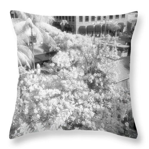 Key West Throw Pillow featuring the photograph Another View by Richard Rizzo