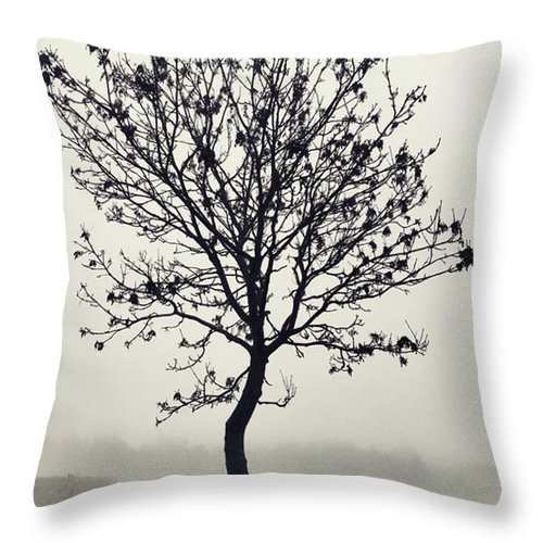 Tree Throw Pillow featuring the photograph Another Walk Through The by John Edwards