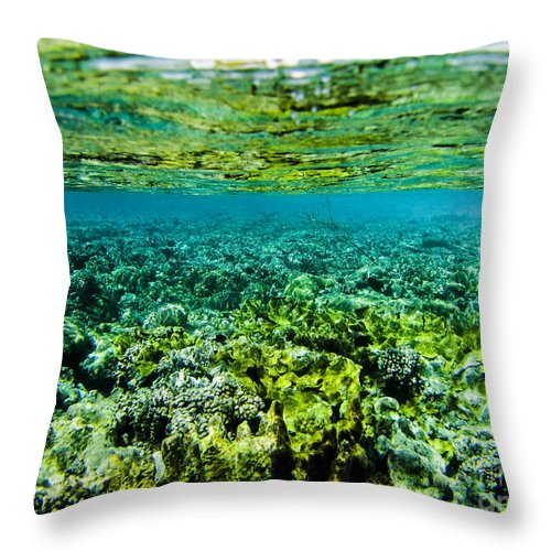 Coral Throw Pillow featuring the photograph Ant Atoll Reef by Dan Norton