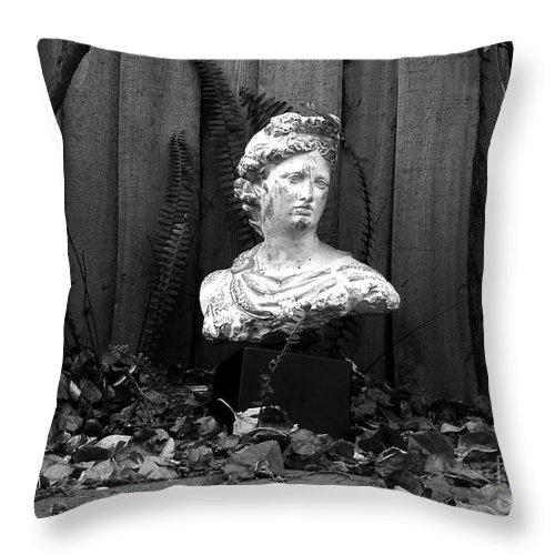 Apollo Throw Pillow featuring the photograph Apollo In The Backyard by David Lee Thompson