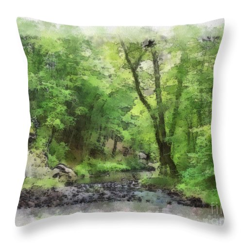 Wright Throw Pillow featuring the photograph Appalachian Creek by Paulette B Wright