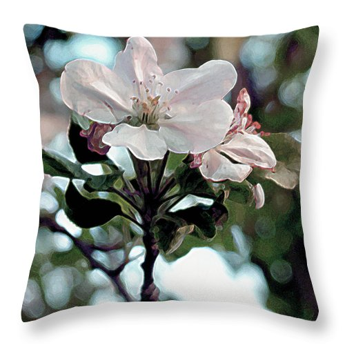 Flowers Throw Pillow featuring the painting Apple Blossom Time by RC DeWinter