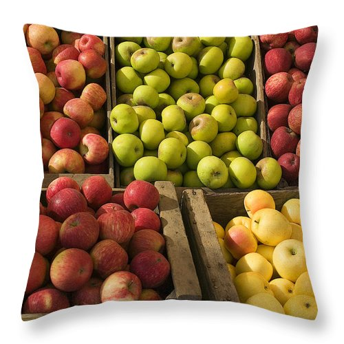 Apple Throw Pillow featuring the photograph Apple Harvest by Garry Gay