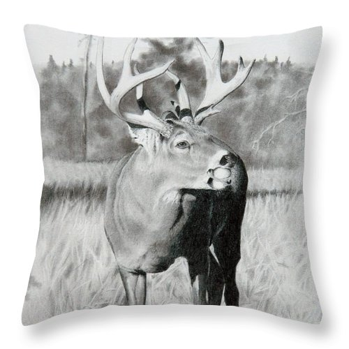 Animal Throw Pillow featuring the drawing Apple Snack by Stan White