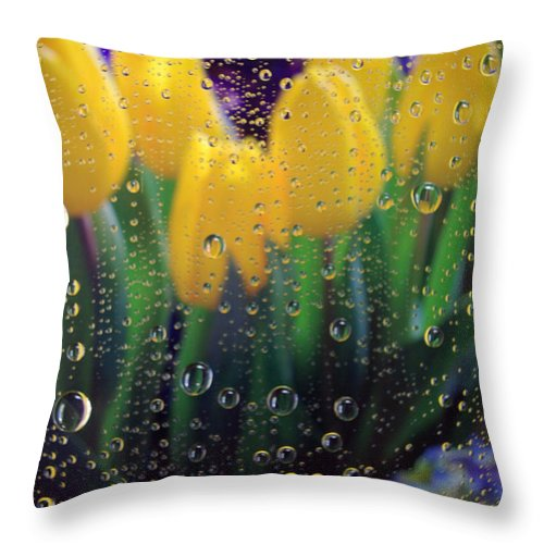 Showers Throw Pillow featuring the photograph April Showers by Linda Mishler