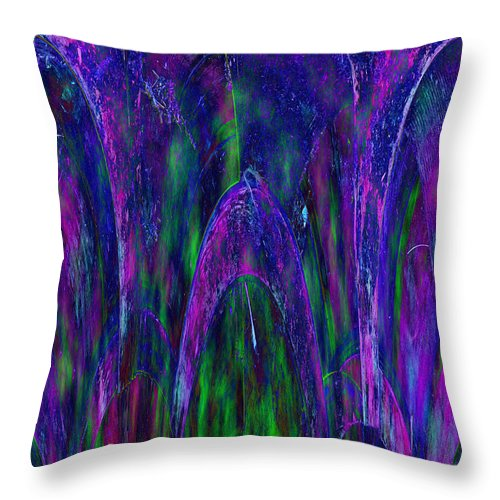 Digital Throw Pillow featuring the photograph Arches by Sue Duda