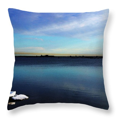 Digital Art Throw Pillow featuring the digital art Arctic Ice by Anthony Jones