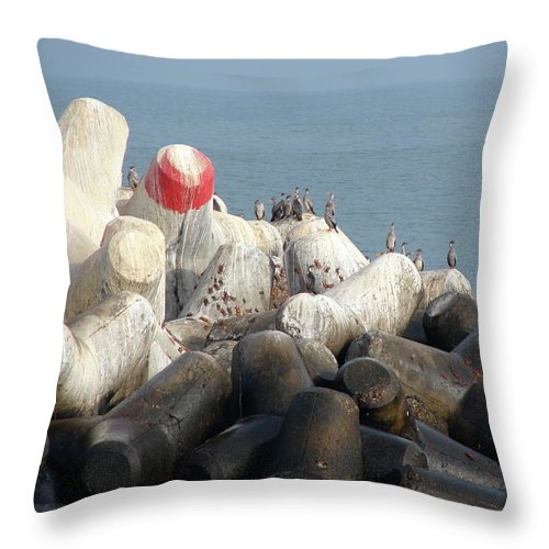 Arica Throw Pillow featuring the photograph Arica Chile Sea Life by Brett Winn