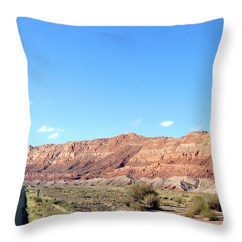 Arizona Throw Pillow featuring the photograph Arizona 17 by Will Borden