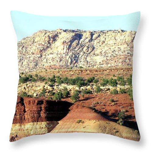 Arizona Throw Pillow featuring the photograph Arizona 18 by Will Borden